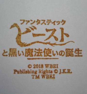 単独表示 東急ファンタビ_ゴール.jpg