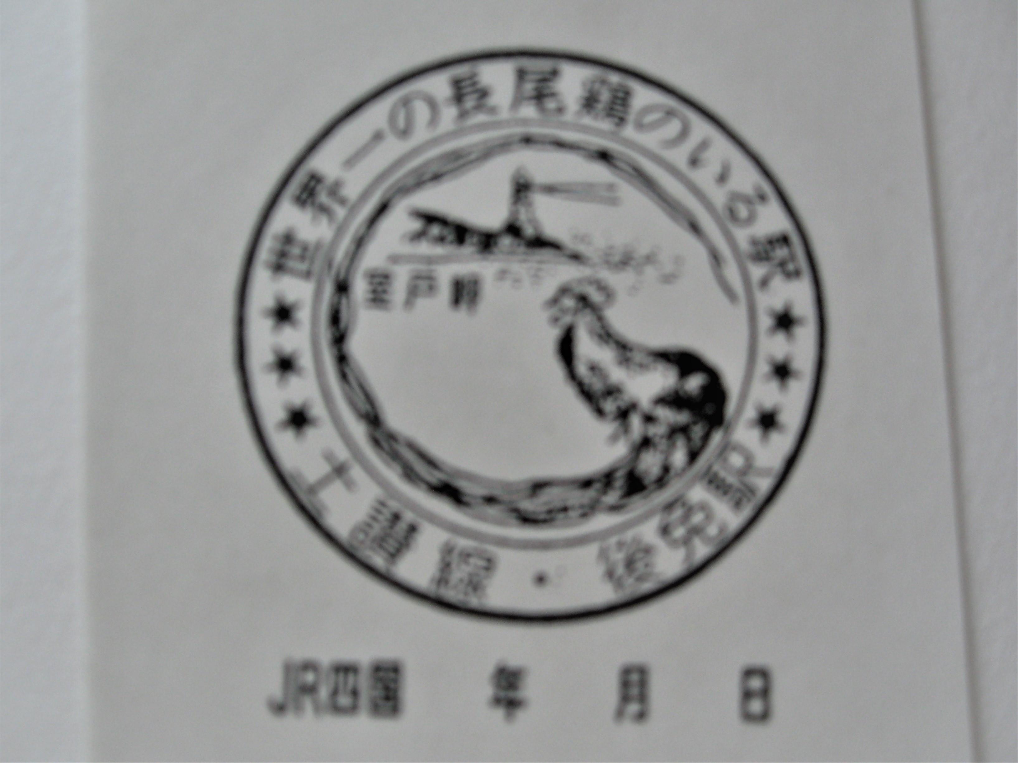 単独表示 IMG_7959 (2).JPG