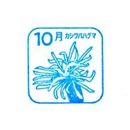 単独表示 高尾山2110.jpg