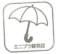 単独表示 ミニプラ.jpg